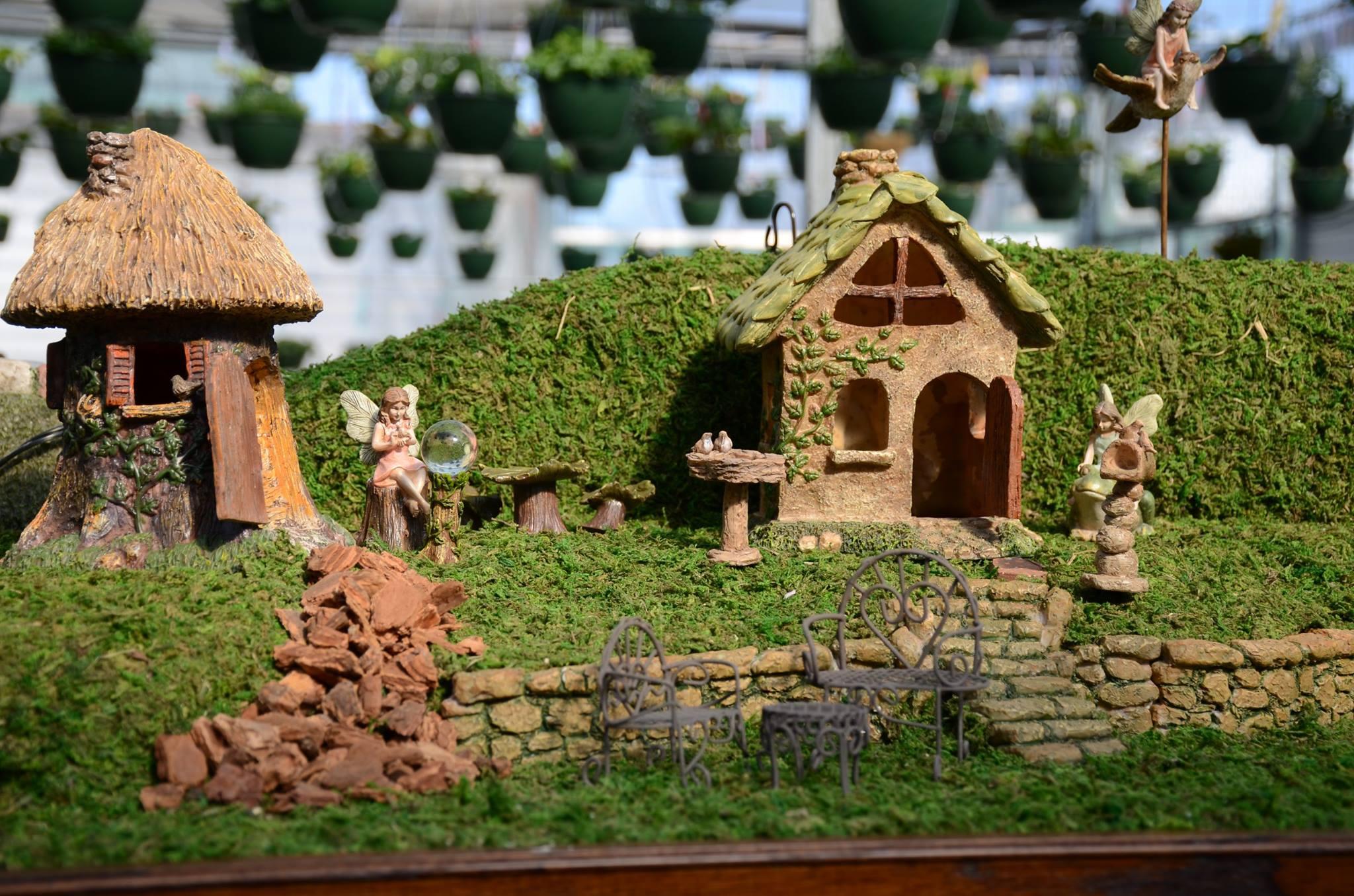 Greenhouse Fairy Gardens